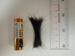 Amount of hair required in hair mineral test example 1